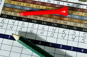 Calcutta format tournament scoring is now available in GolfHerd